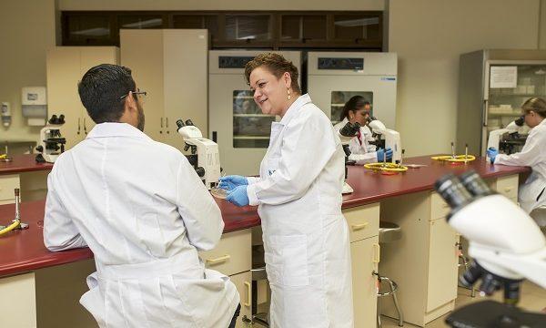 Diplomado en Asistente de Laboratorio Químico Clínico